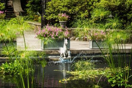 DSC_2072 RP Garden comp Bob Leitch