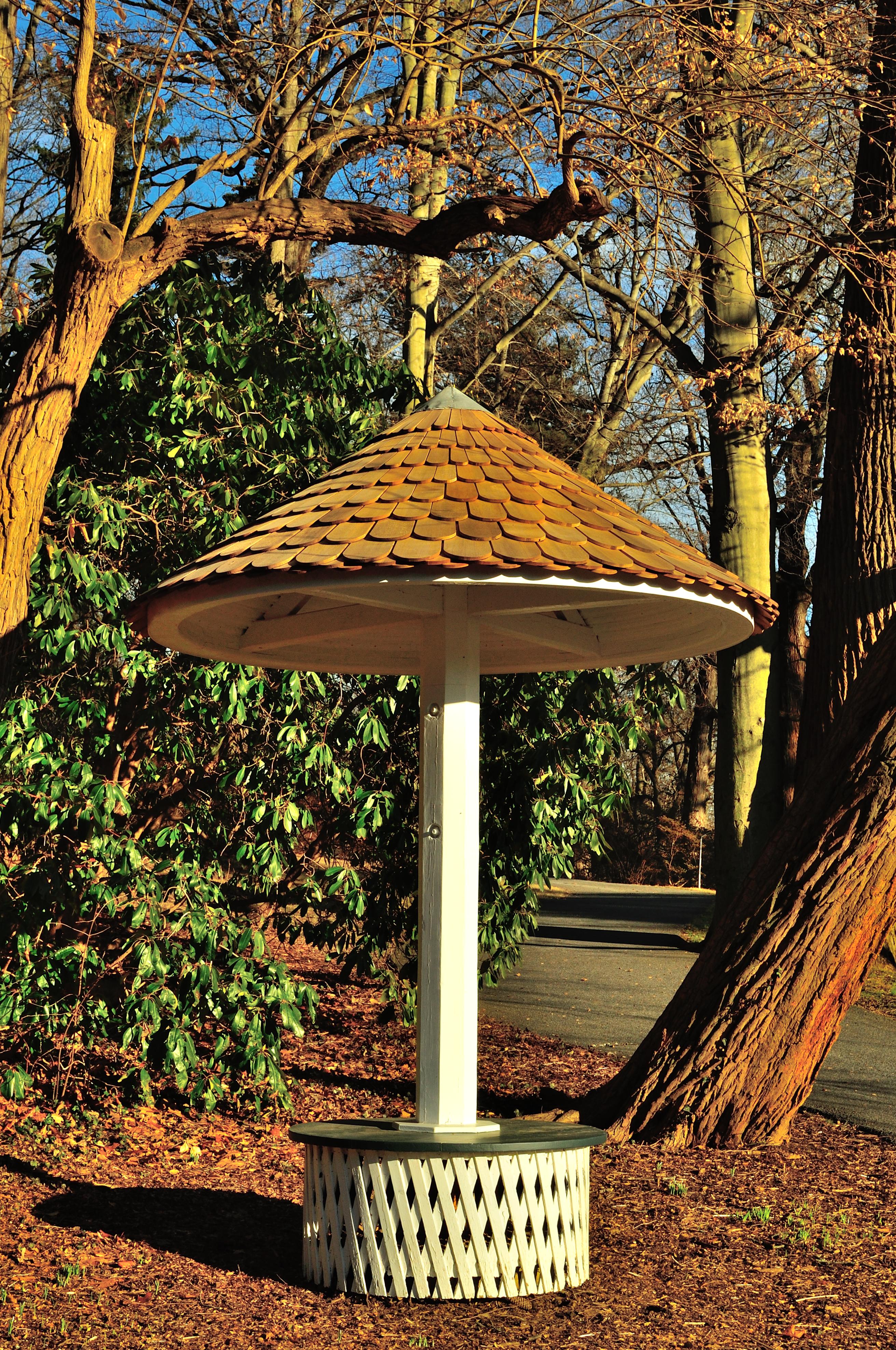 Umbrella Seat
