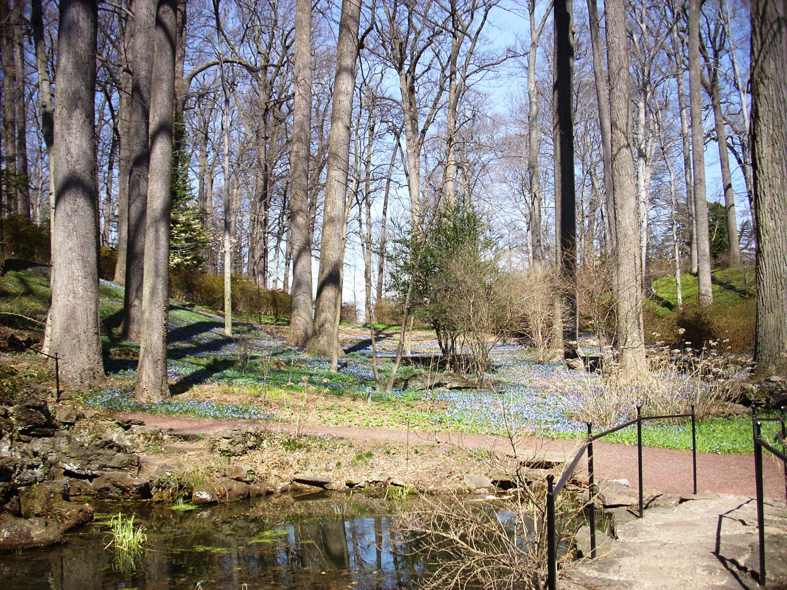 glade-garden-blue-3252009-kls