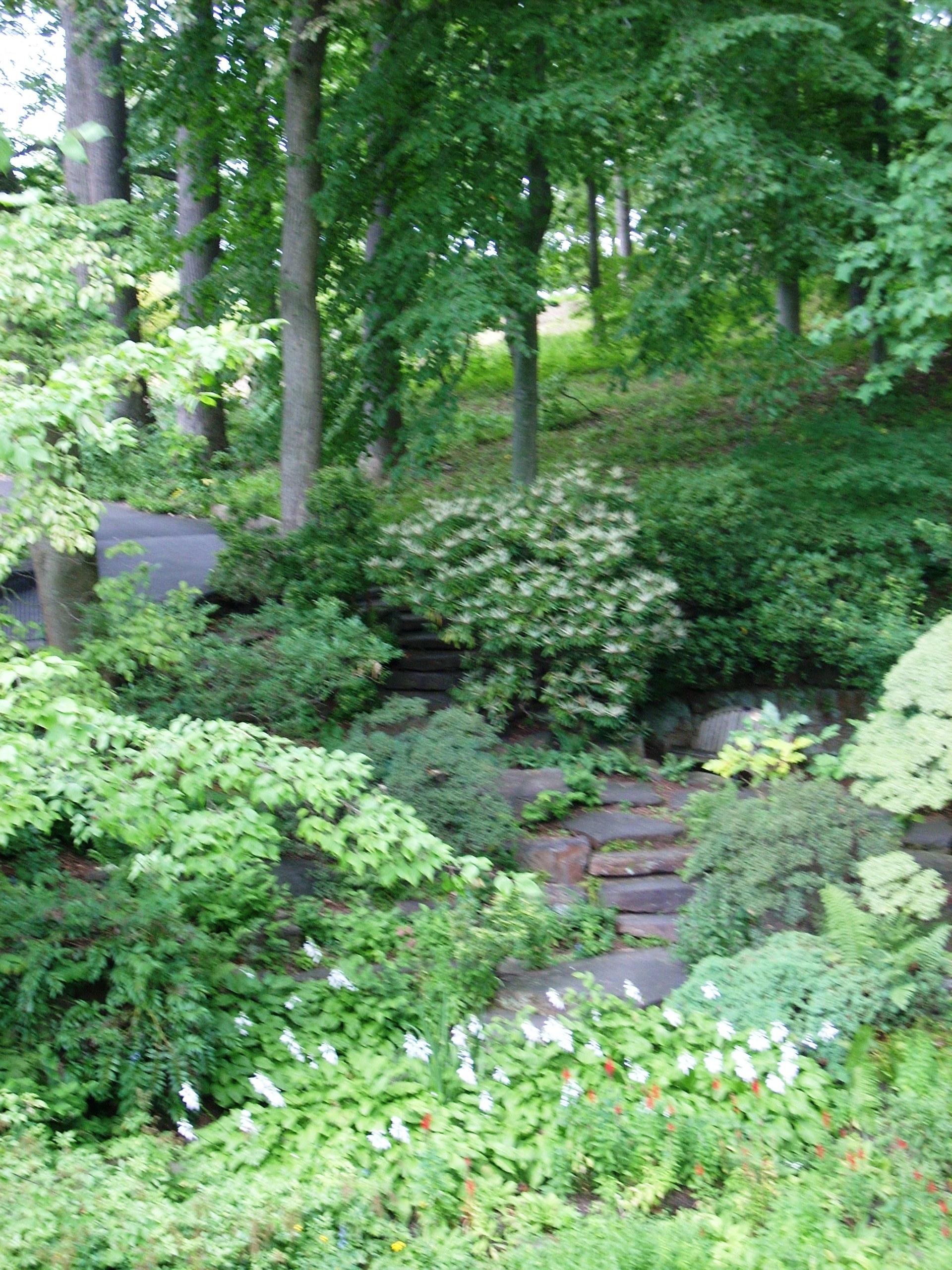 A Summer Tuesday « Winterthur Garden Blog