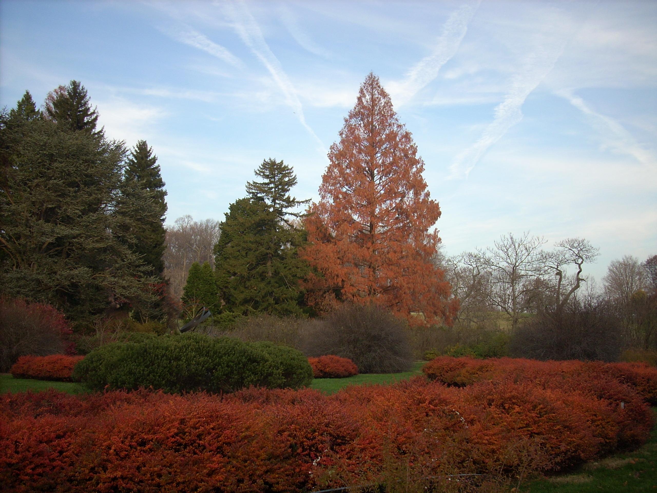 A Moment in the Garden « Winterthur Garden Blog