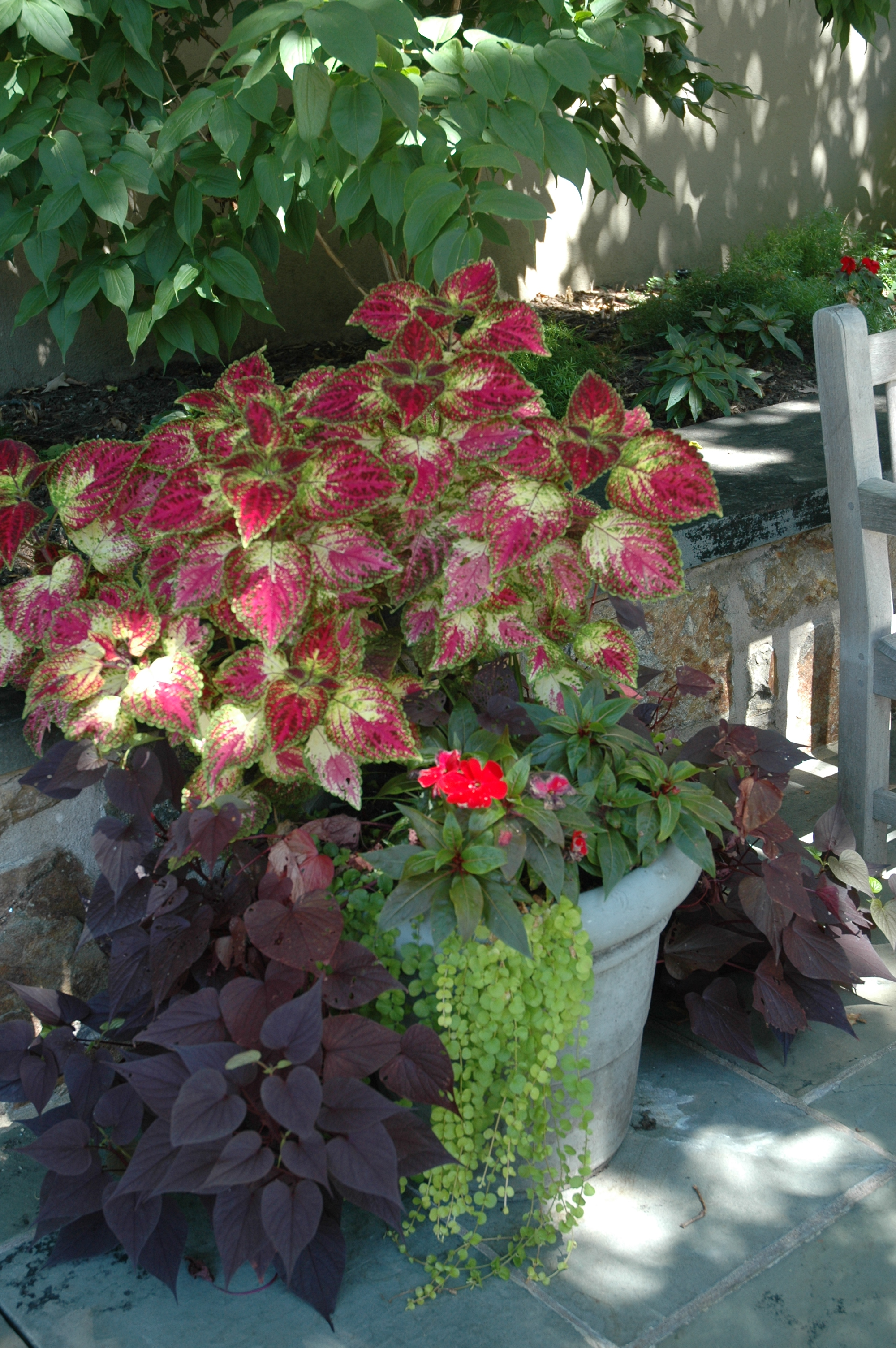 be inspired fall and winter container ideas u2013 october 26 at 11