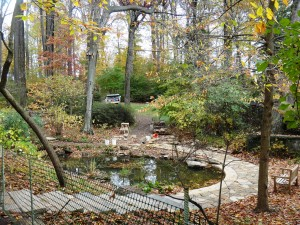Construction continues on the lower Glade garden. It's lookin' good!