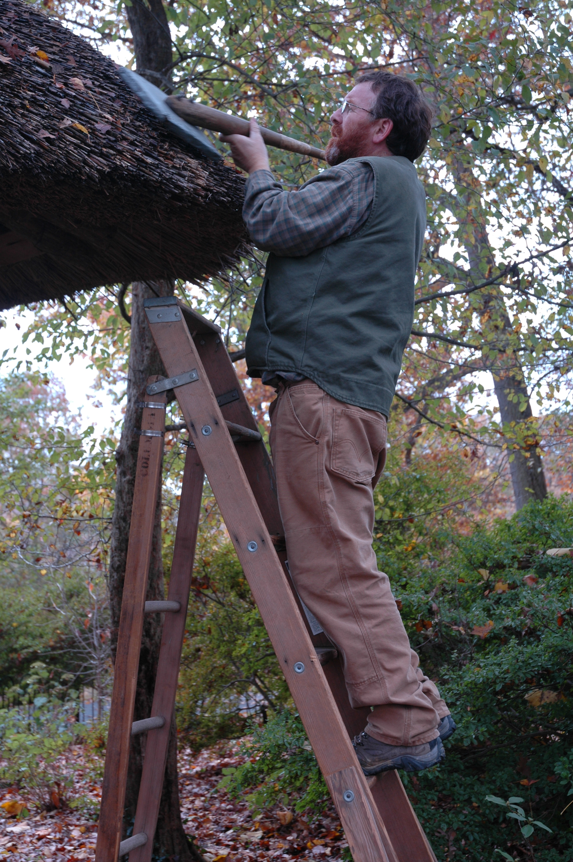 Thatching of Tulip-tree House in Enchanted Woods