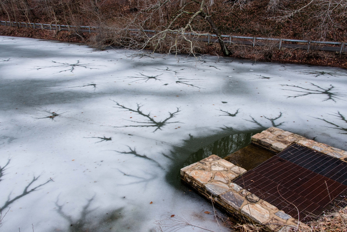 Ice Art on Duck Pond