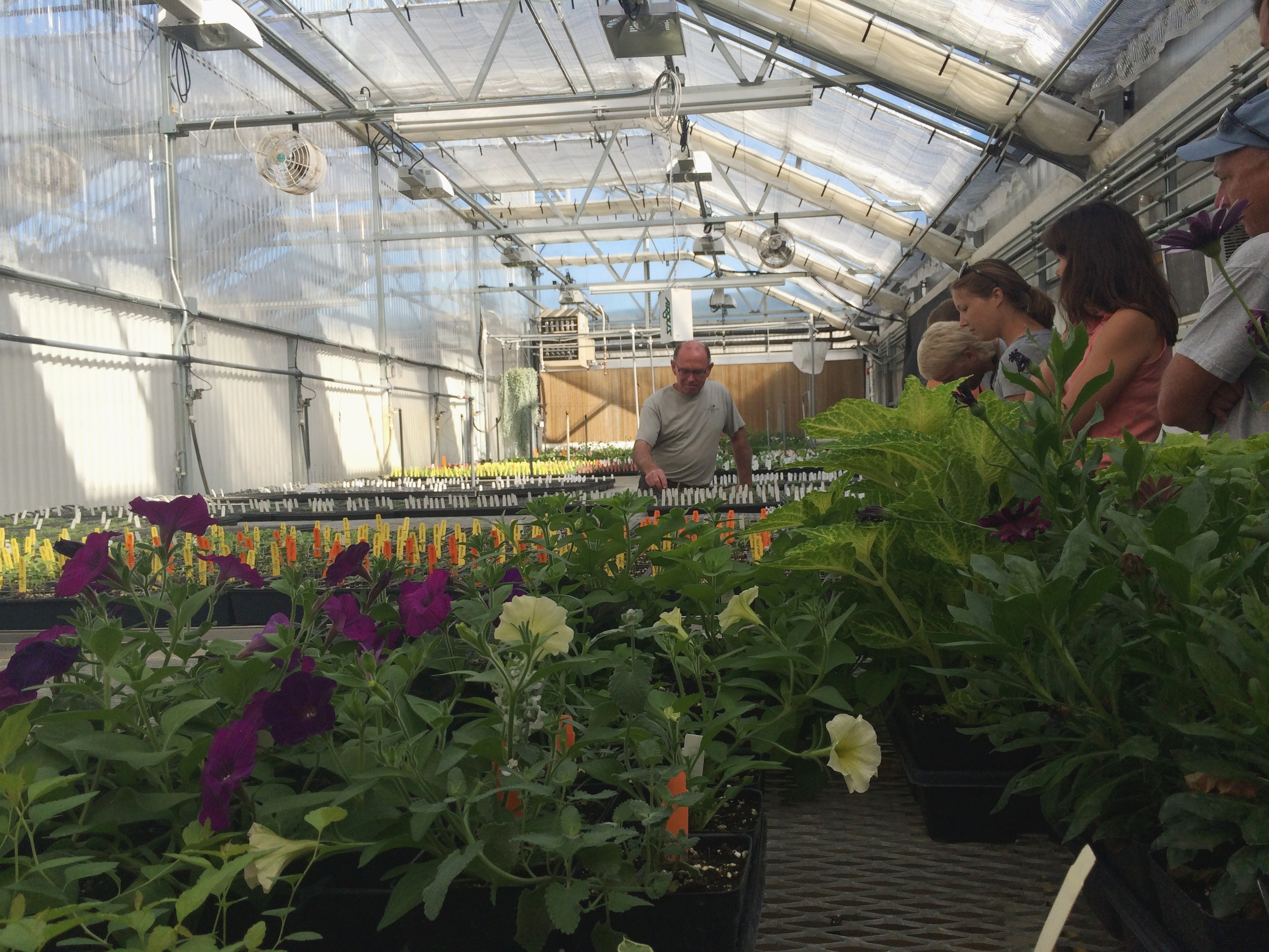 One of Many Greenhouses at Garden Genetics