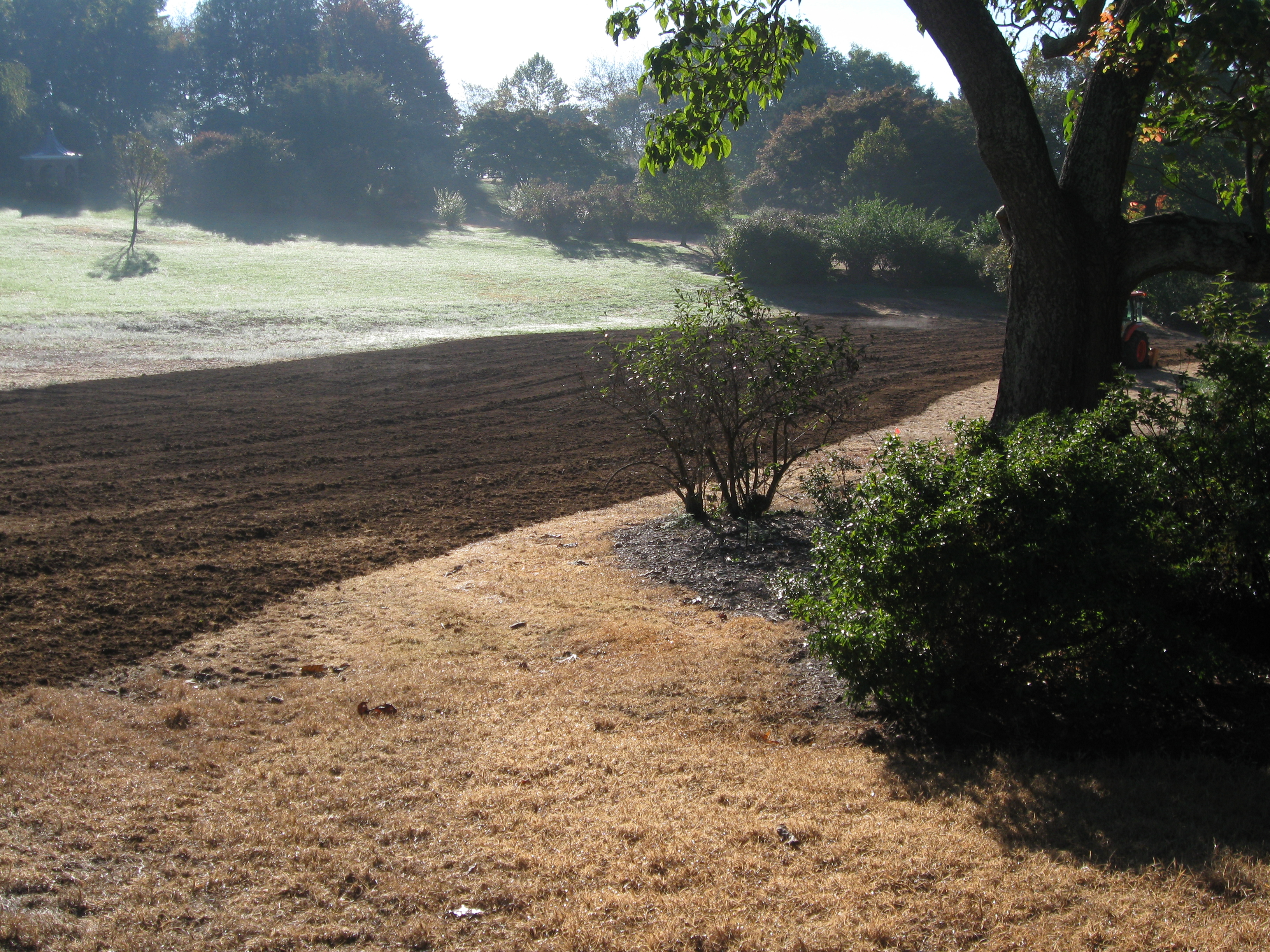 Before: browned-out grass and tilling