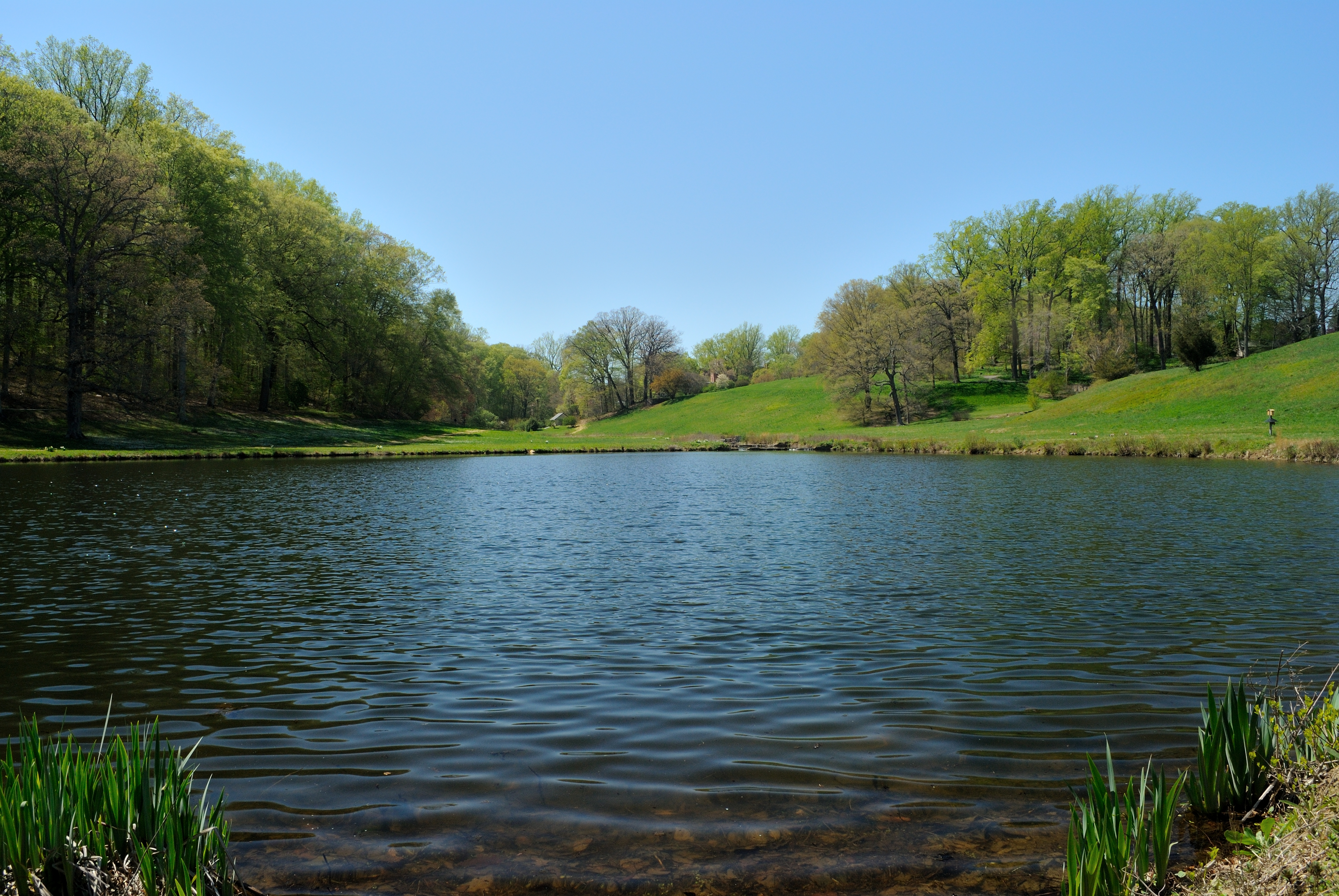 Winterthur Garden Blog