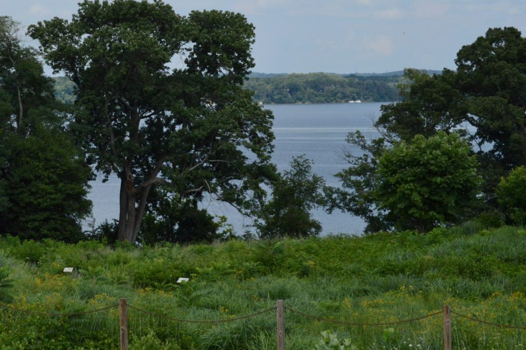 View over the meadow to the mighty Potomac