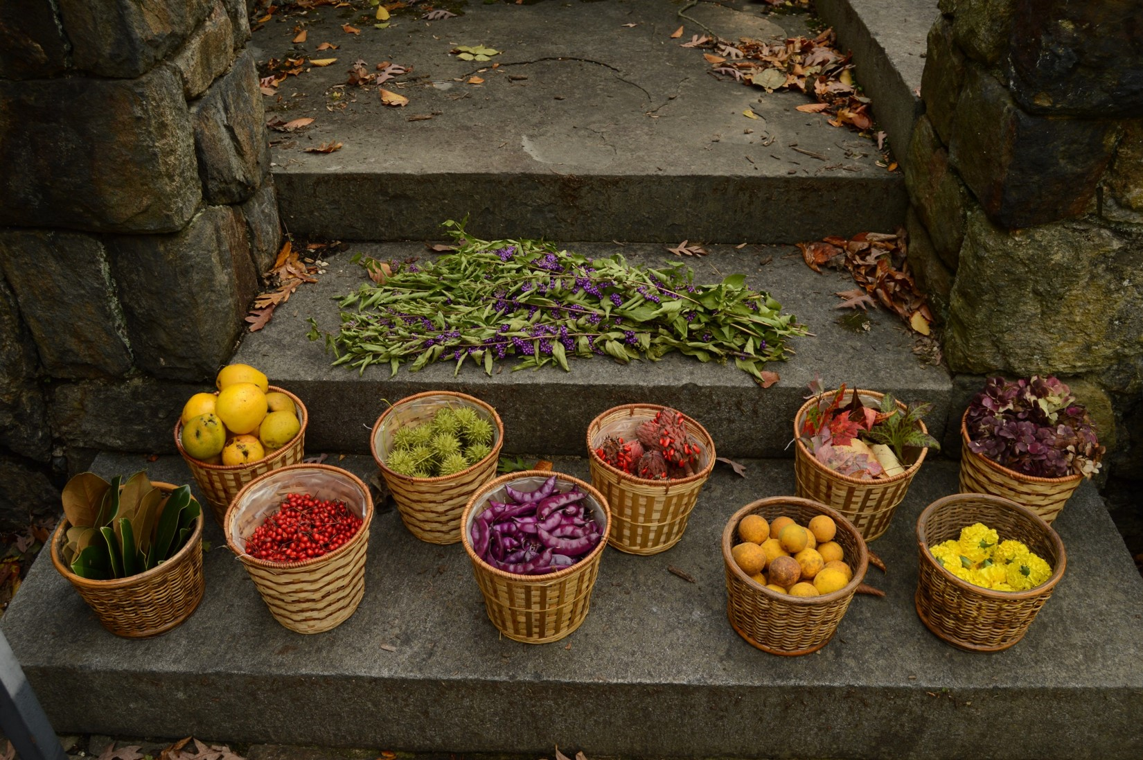 Into the World of Land Art « Winterthur Garden Blog
